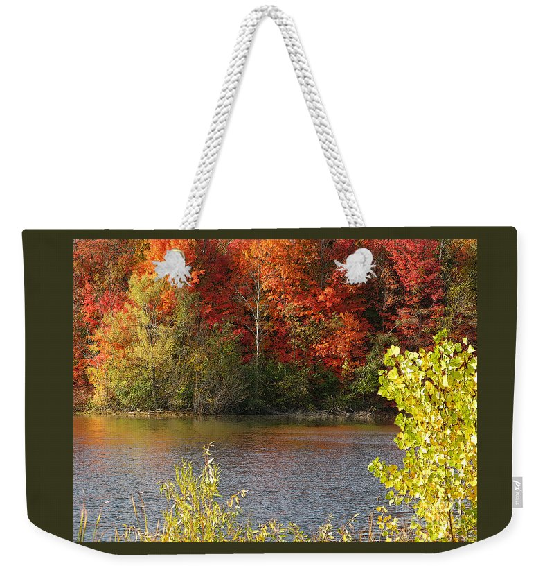 Autumn Weekender Tote Bag featuring the photograph Sunlit Autumn by Ann Horn