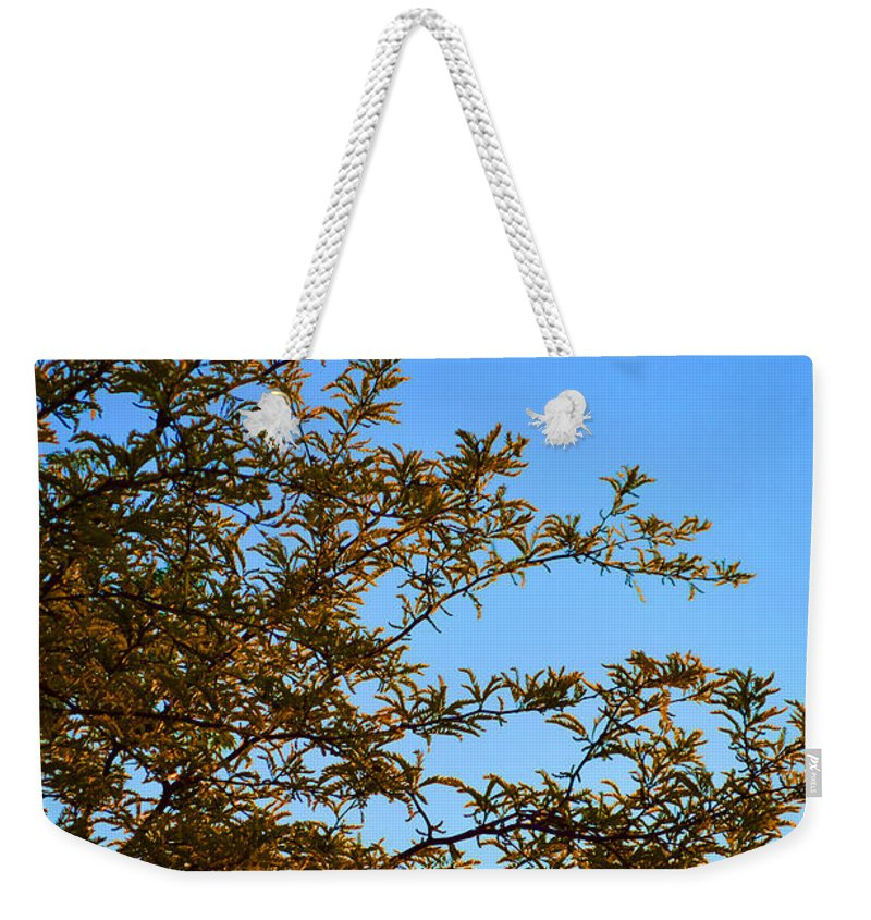 Sunrise Weekender Tote Bag featuring the photograph Sunrise by Alys Caviness-Gober