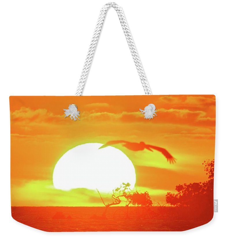 Adaptation Weekender Tote Bag featuring the photograph Sunset At Elizabeth Bay by Kike Calvo