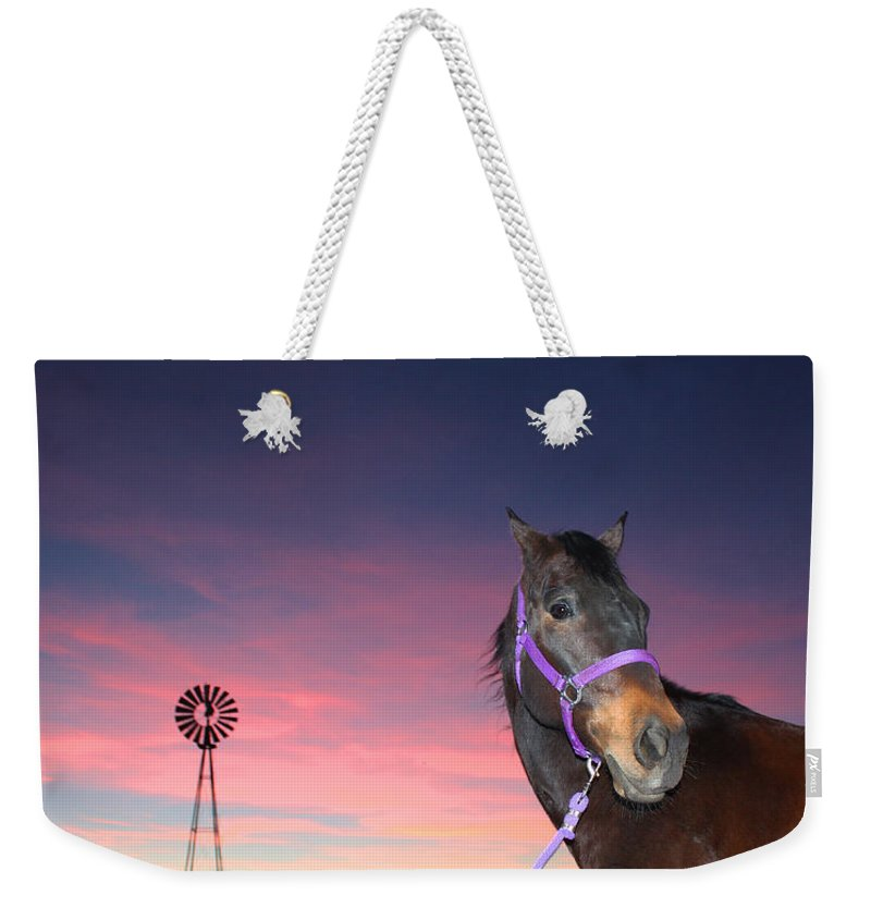 Quarterhorse Weekender Tote Bag featuring the photograph Sunset At The Farm by Laurie Larson