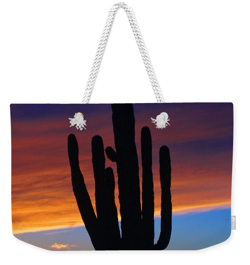 Sunset Weekender Tote Bag featuring the photograph Sunset Cactus by Tommy Anderson