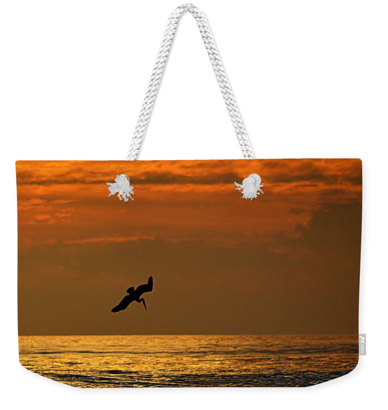 Scenic Weekender Tote Bag featuring the photograph Sunset Dive by AJ Schibig