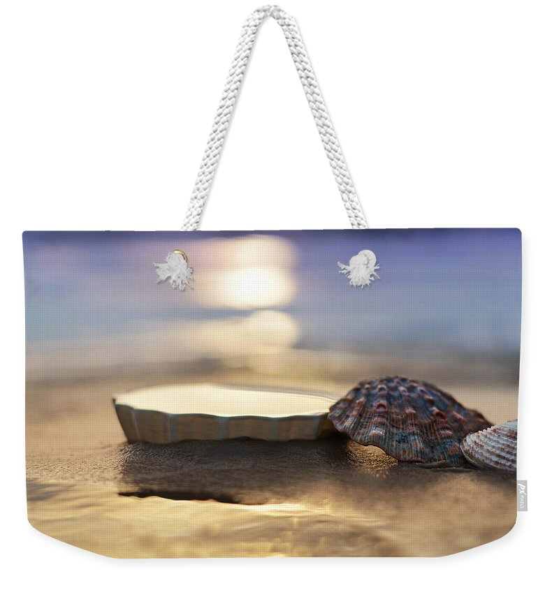 Laura Fasulo Weekender Tote Bag featuring the photograph Sunset Shells by Laura Fasulo