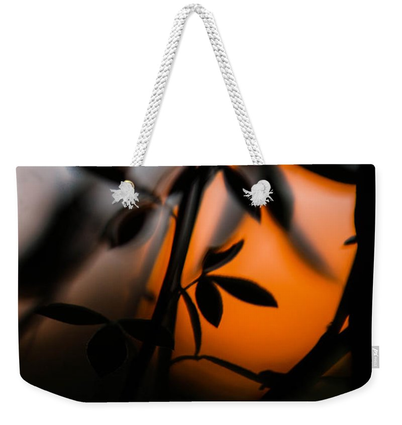 Sunset Weekender Tote Bag featuring the photograph Sunset Silhouette 2 by Danielle Silveira