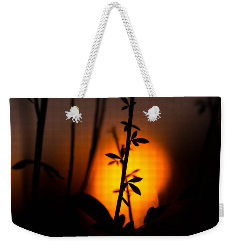 Sunset Weekender Tote Bag featuring the photograph Sunset Silhouette by Danielle Silveira