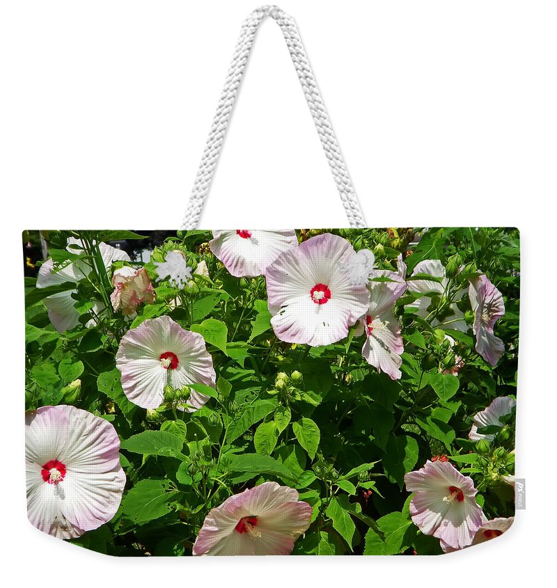 Flower Weekender Tote Bag featuring the photograph Sunshine by Aimee L Maher ALM GALLERY