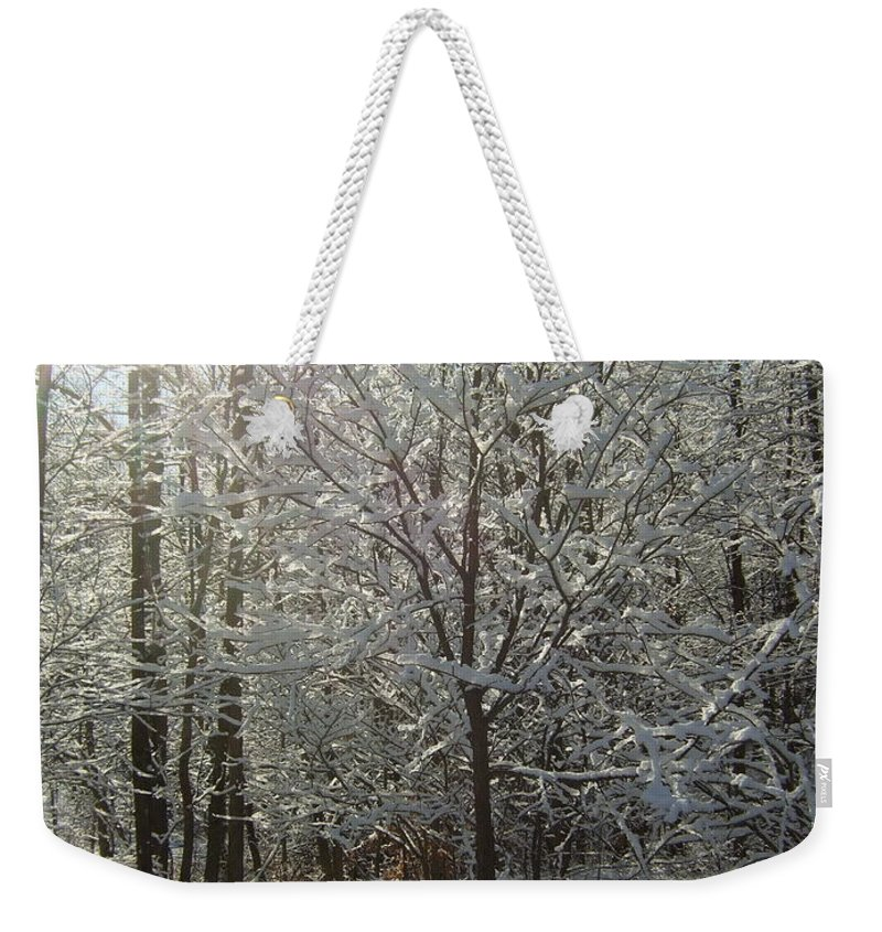 Weekender Tote Bag featuring the photograph Sunshine And Snow by Katerina Naumenko