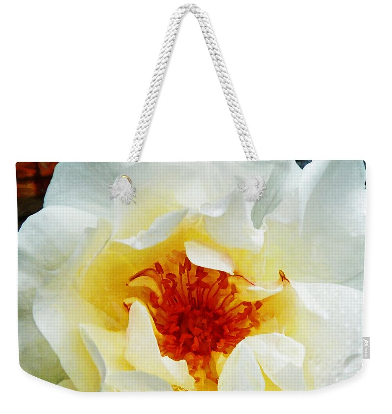 Rose Weekender Tote Bag featuring the photograph Sunshine On A Rainy Day by Steve Taylor