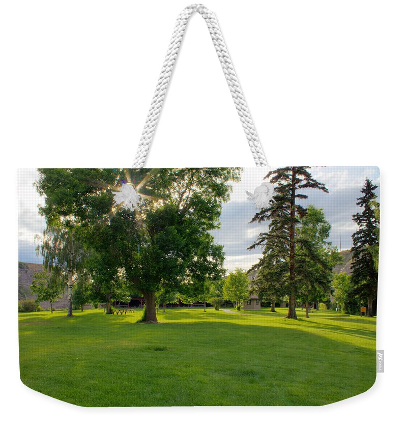 Landscape Weekender Tote Bag featuring the photograph Sunshine Through The Trees by John Lee