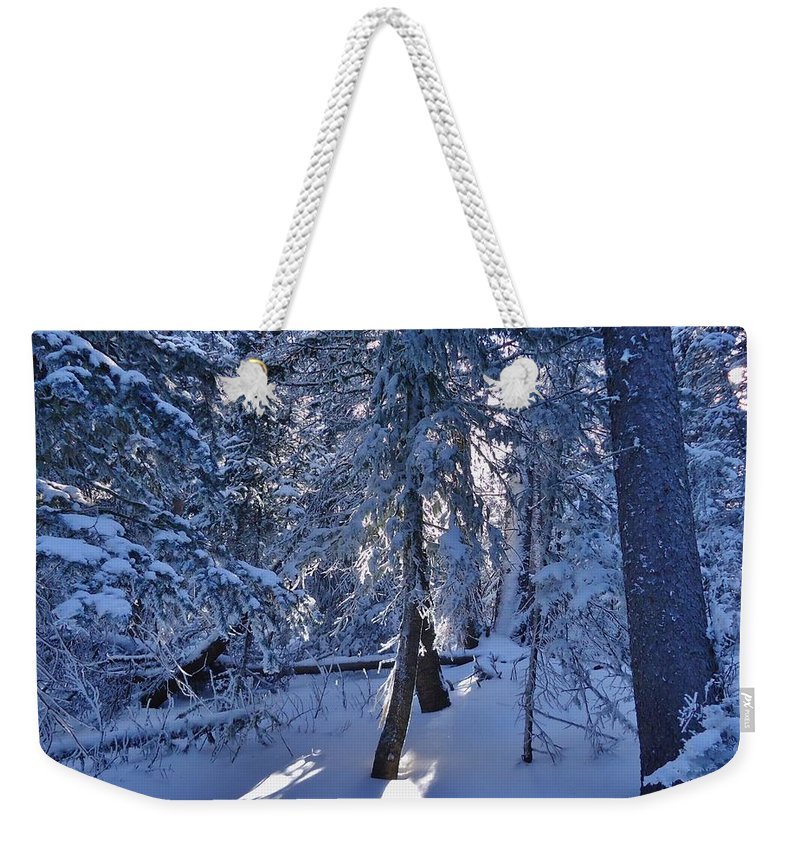 Trees Weekender Tote Bag featuring the photograph Sunshine Through Winter Trees by Lois  Rivera