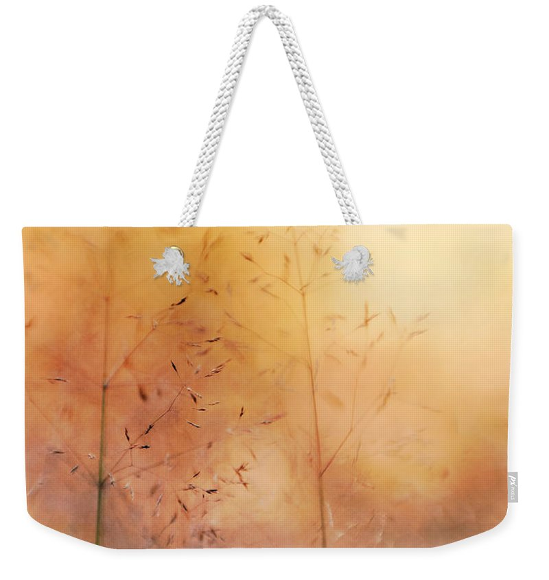Grass Weekender Tote Bag featuring the photograph Surreal Grass by Jolanta Zychlinska