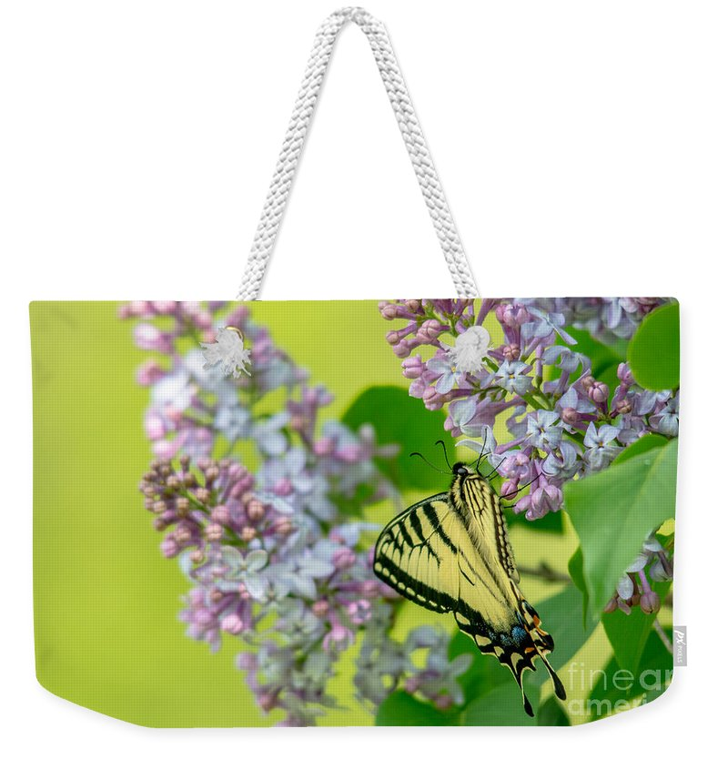 Landscape Weekender Tote Bag featuring the photograph Swallowtail Butterfly by Cheryl Baxter