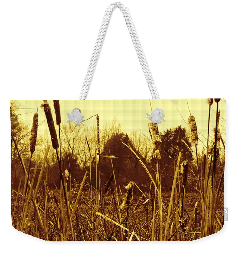 Swamp Weekender Tote Bag featuring the photograph Swamp Grass by Kathy Clark