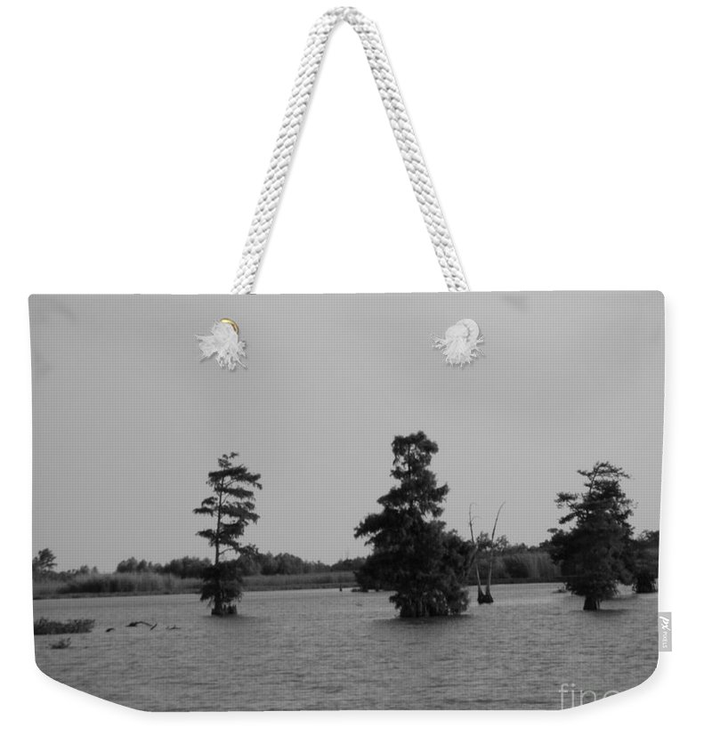 Cypress Trees Weekender Tote Bag featuring the photograph Swamp Tall Cypress Trees Black And White by Joseph Baril