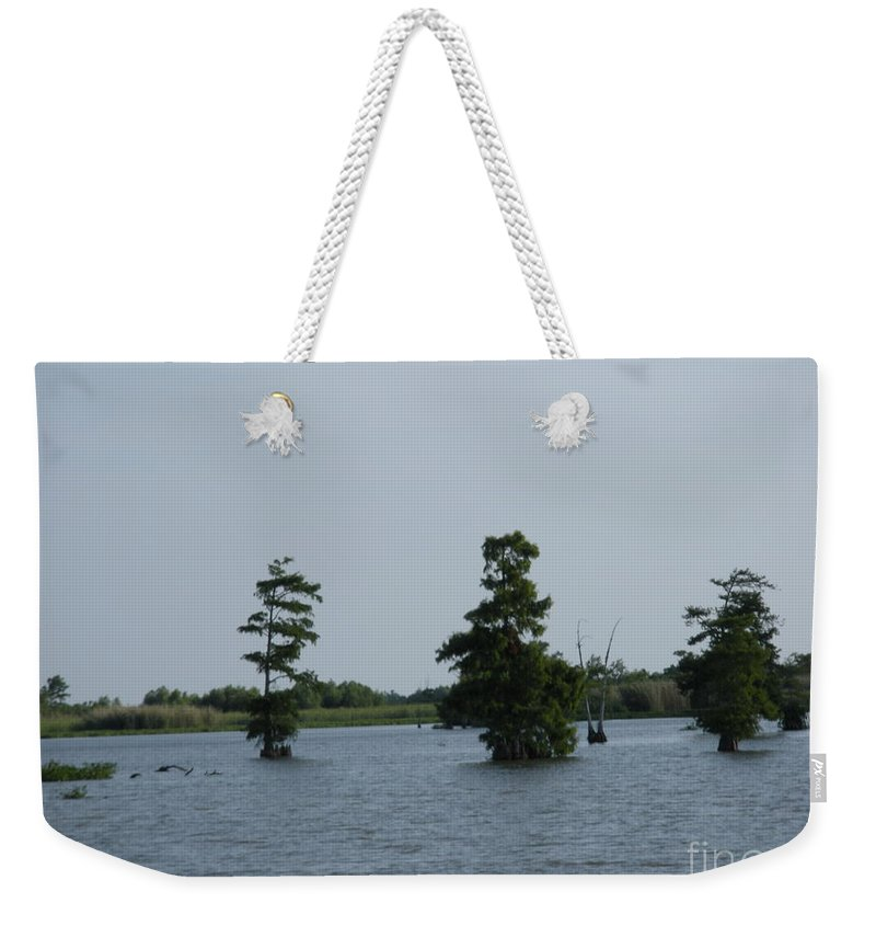 Cypress Trees Weekender Tote Bag featuring the photograph Swamp Tall Cypress Trees by Joseph Baril