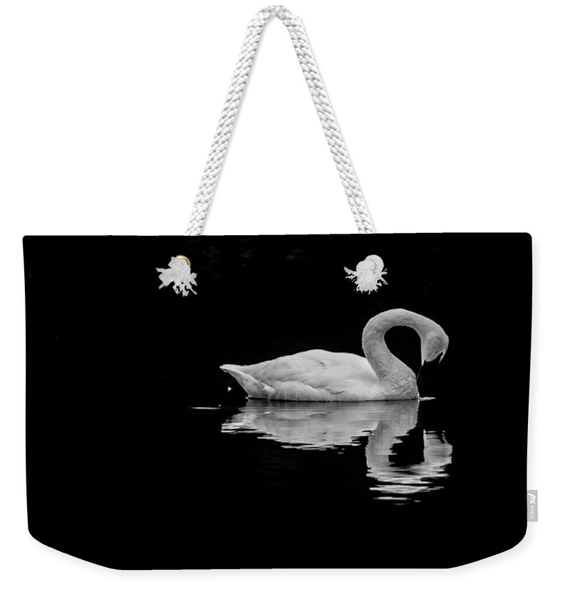 Swan Weekender Tote Bag featuring the photograph Swan 2 by David Downs