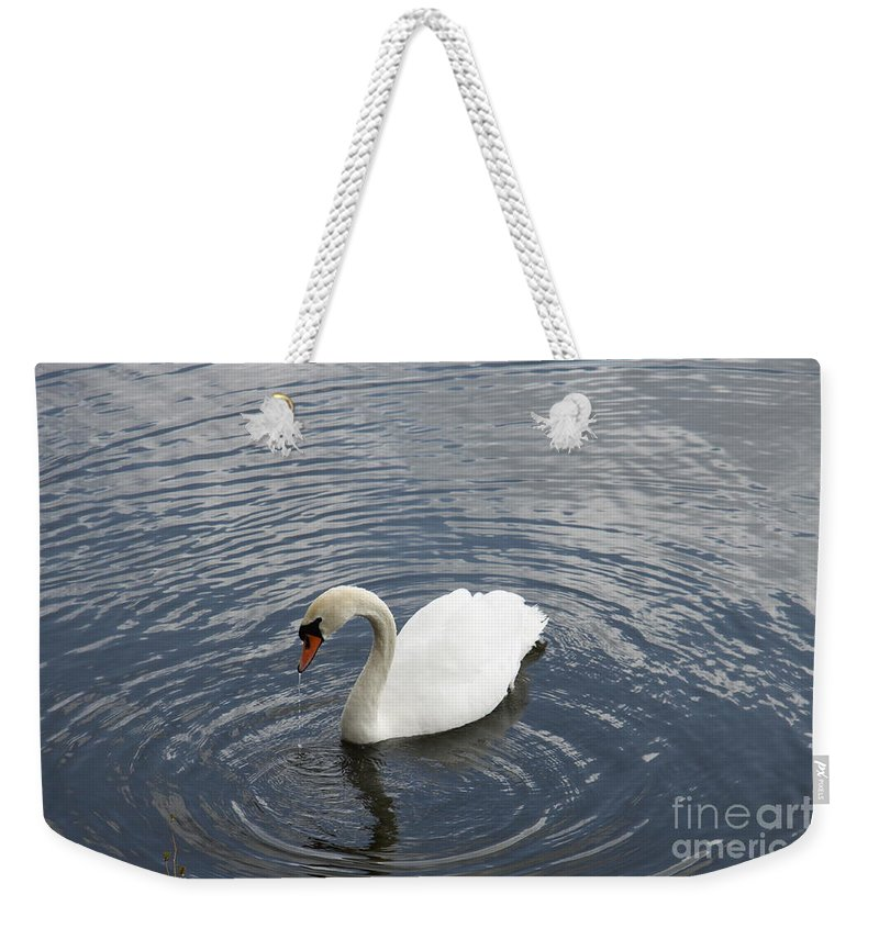 Swan Weekender Tote Bag featuring the photograph Swan Circles by Christiane Schulze Art And Photography