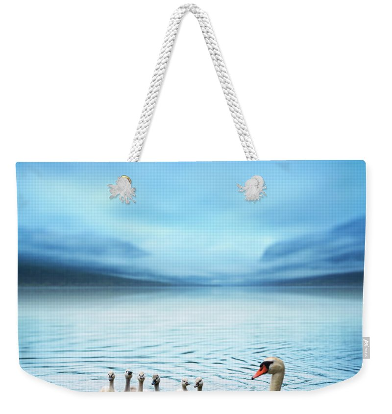 Scenics Weekender Tote Bag featuring the photograph Swan Family On The Lake by Borchee