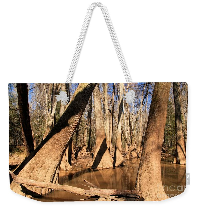 Congaree National Park Weekender Tote Bag featuring the photograph Swayed by Adam Jewell