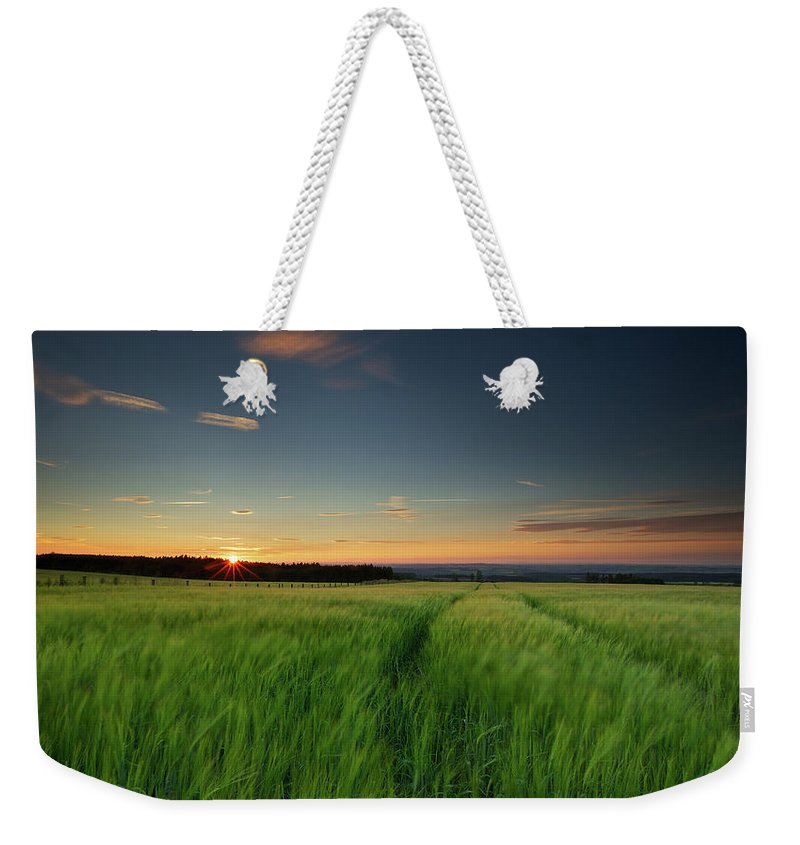 Tranquility Weekender Tote Bag featuring the photograph Swaying Barley At Sunset by By Simon Gakhar