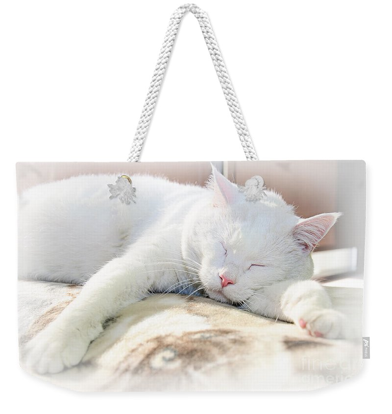 Andee Design Cats Weekender Tote Bag featuring the photograph Sweet Dreams by Andee Design