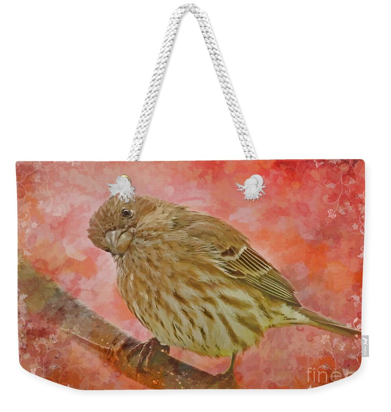 Bird Weekender Tote Bag featuring the photograph Sweet Female House Finch 3 - Digital Paint by Debbie Portwood