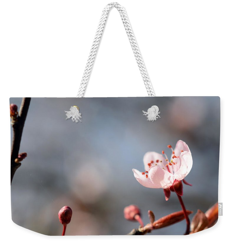 Photography Weekender Tote Bag featuring the photograph Sweet Taste by Sebastiano Secondi