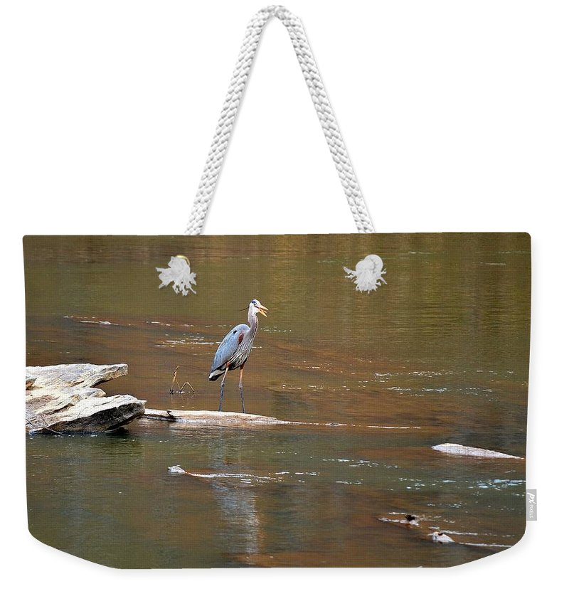 Sweetwater Creek State Park Weekender Tote Bag featuring the photograph Sweetwater Creek Heron by Tara Potts