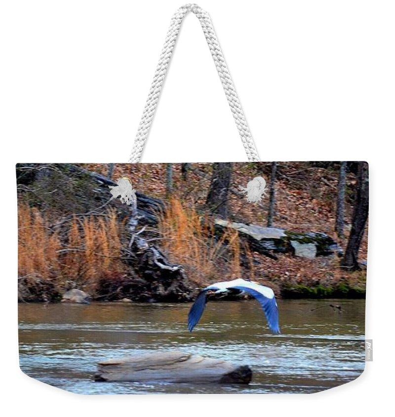 Heron Weekender Tote Bag featuring the photograph Sweetwater Heron In Flight by Tara Potts