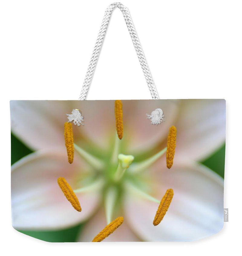 Space Weekender Tote Bag featuring the photograph Symmetrical Flower Closeup by Alex Grichenko