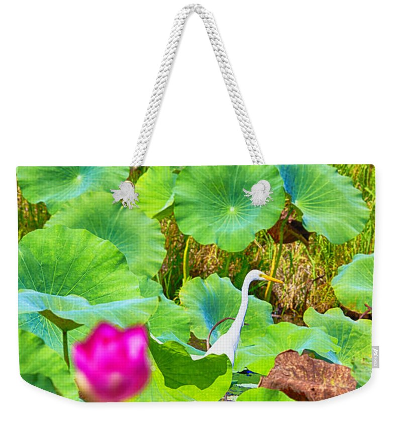 Lotus Flower Weekender Tote Bag featuring the photograph Tail-end Of The Wet Season by Douglas Barnard