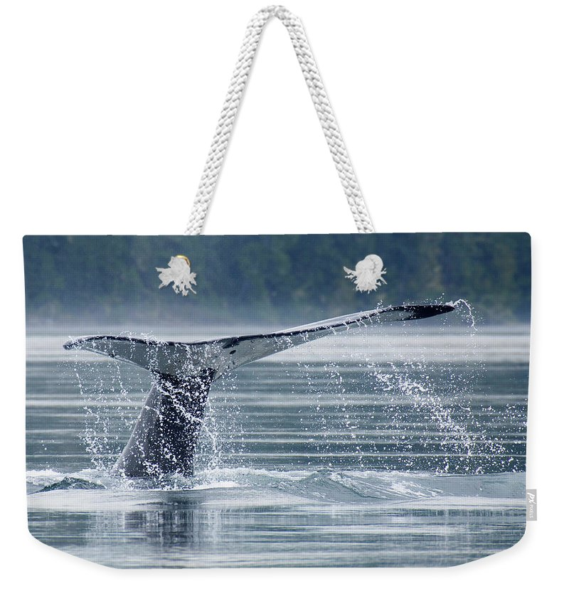 One Animal Weekender Tote Bag featuring the photograph Tail Of Humpback Whale by Grant Faint