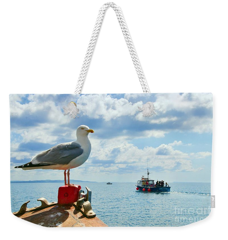 Marie F Weekender Tote Bag featuring the photograph Taking A Bow by Susie Peek