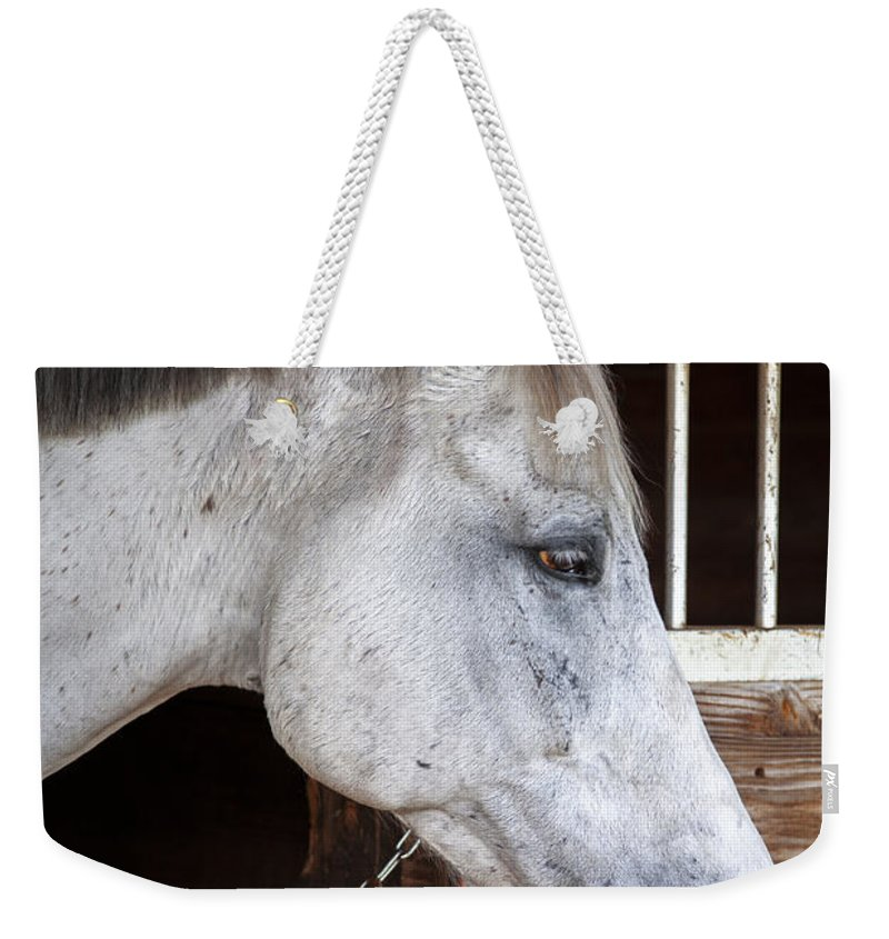 Rocking Horse Stables Weekender Tote Bag featuring the photograph Taking A Break by Rich Franco