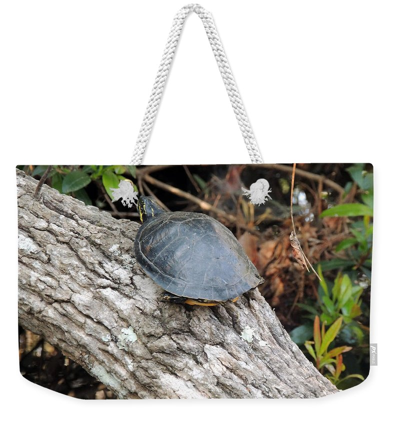 Digital Photography Weekender Tote Bag featuring the photograph Taking A Breather by Kim Pate