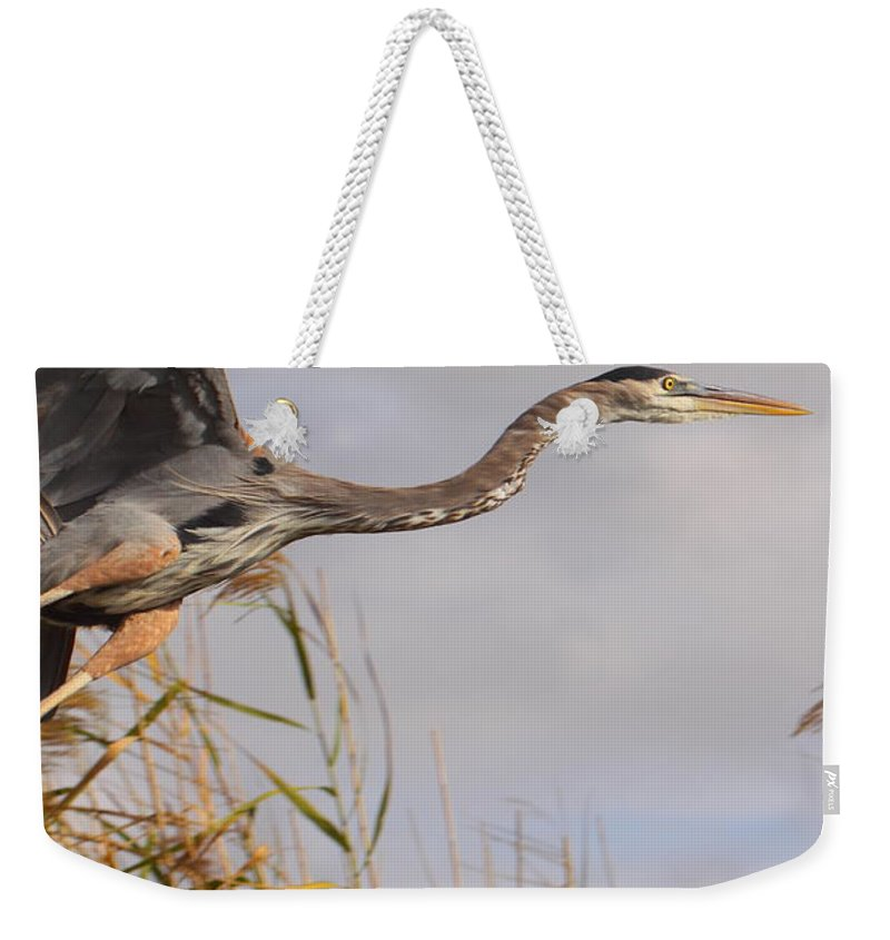Birds Weekender Tote Bag featuring the photograph Taking Flight by Bruce J Robinson