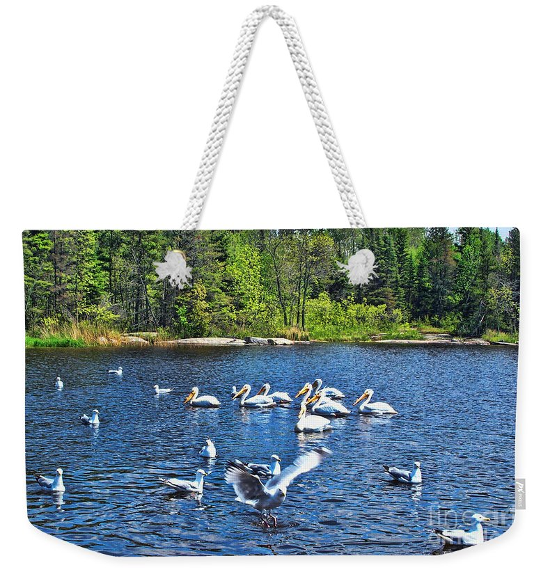 Ontario Weekender Tote Bag featuring the photograph Taking Flight In Ontario by Tommy Anderson