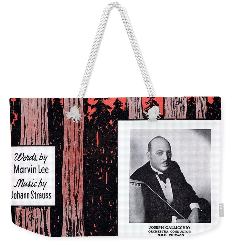 Nostalgia Weekender Tote Bag featuring the photograph Tales From The Vienna Woods by Mel Thompson