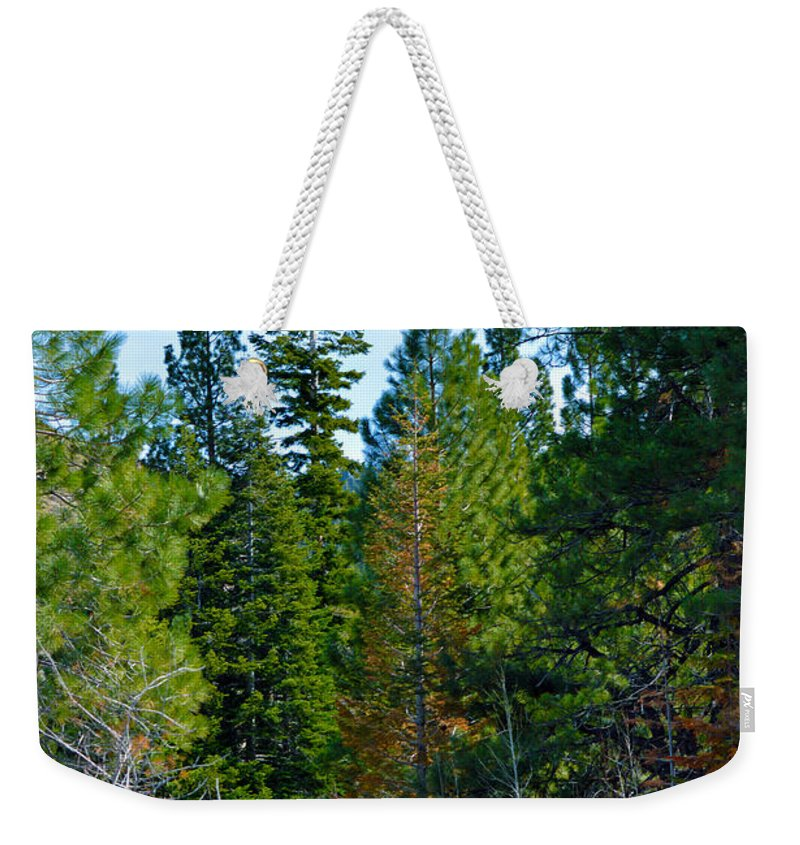 Nevada Weekender Tote Bag featuring the photograph Tall by Brent Dolliver