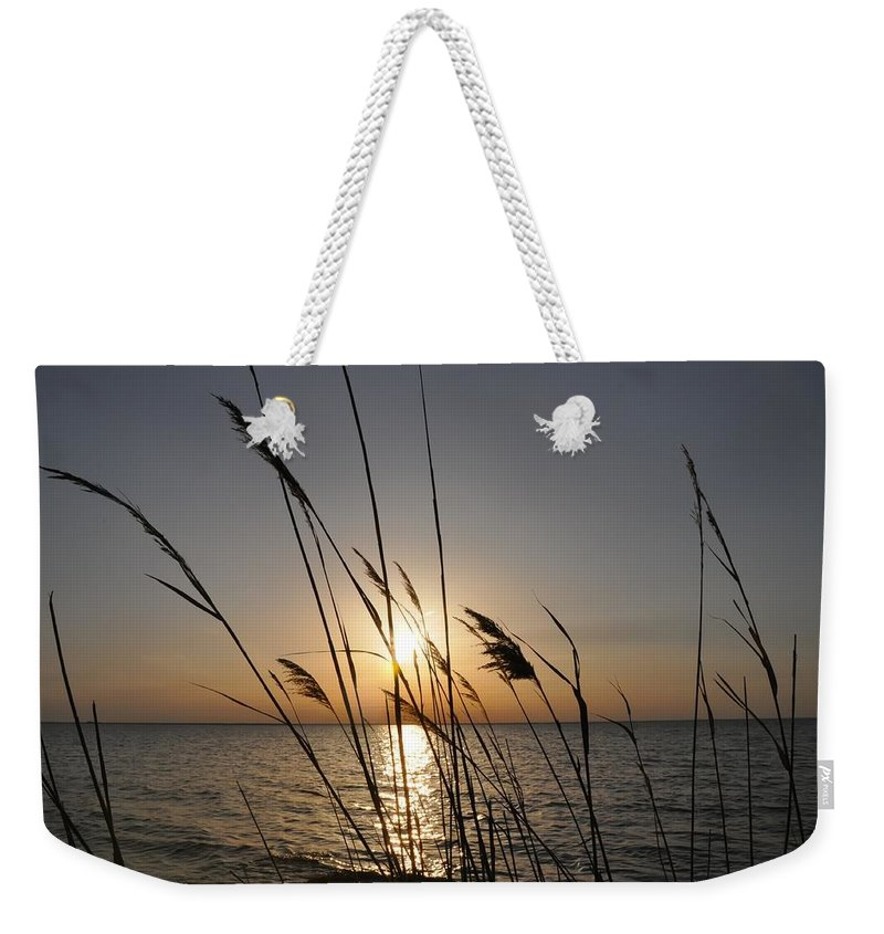 Sunset Weekender Tote Bag featuring the photograph Tall Grass Sunset by Bill Cannon