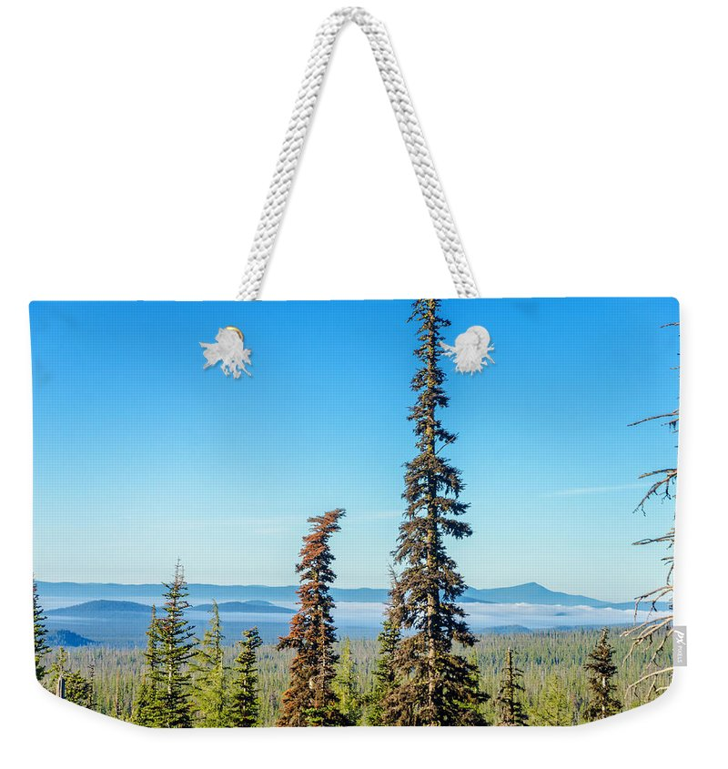 Forest Weekender Tote Bag featuring the photograph Tall Pine Trees And Hilly Background by Jess Kraft