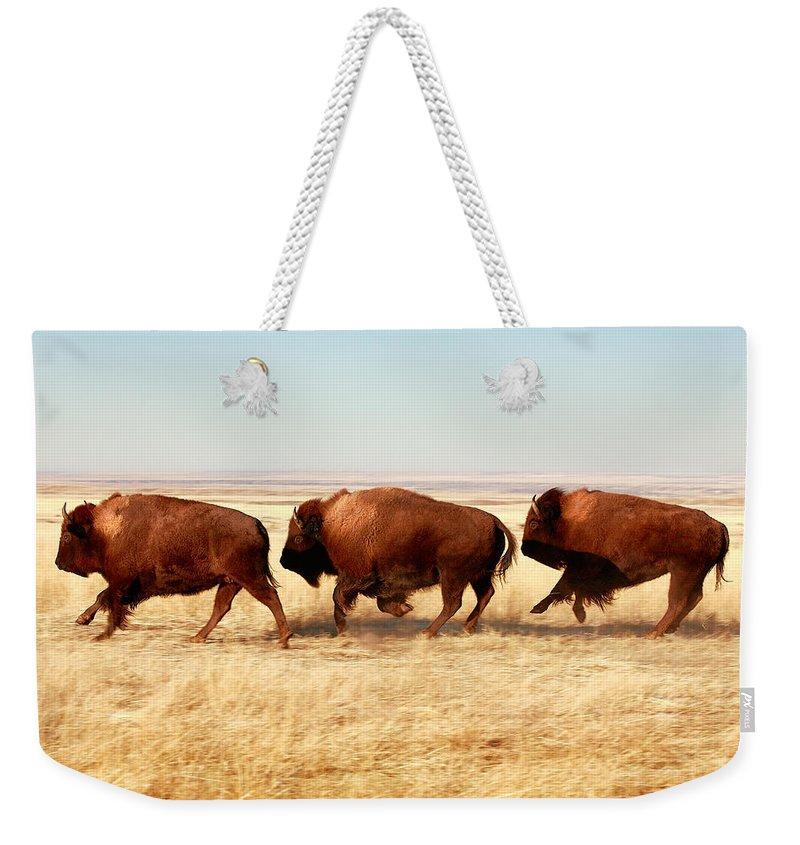 Faa Weekender Tote Bags
