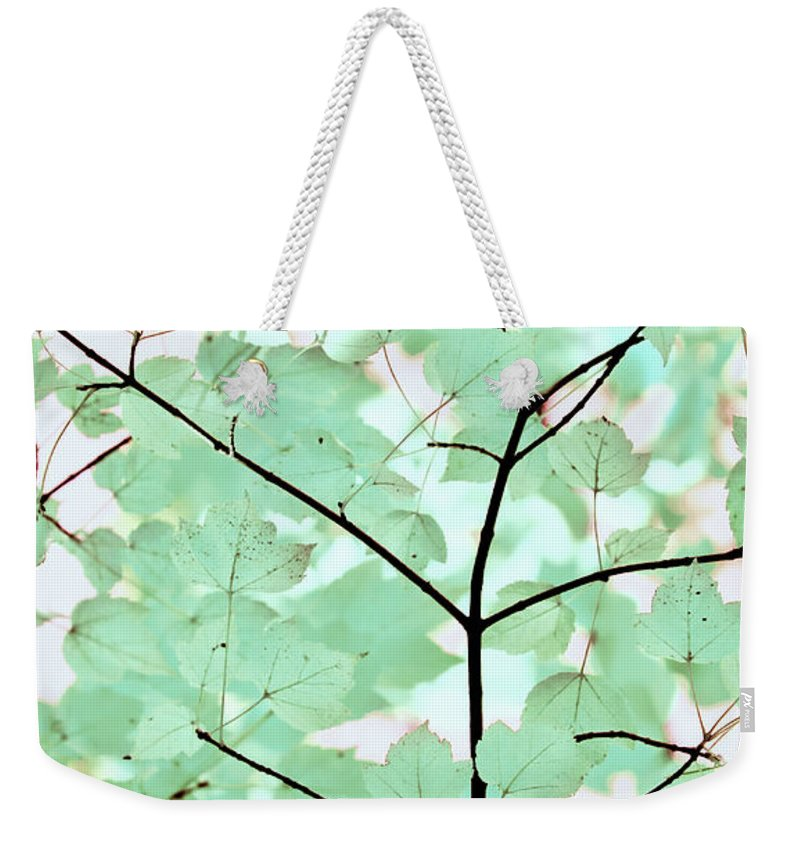 Leaf Weekender Tote Bag featuring the photograph Teal Greens Leaves Melody by Jennie Marie Schell