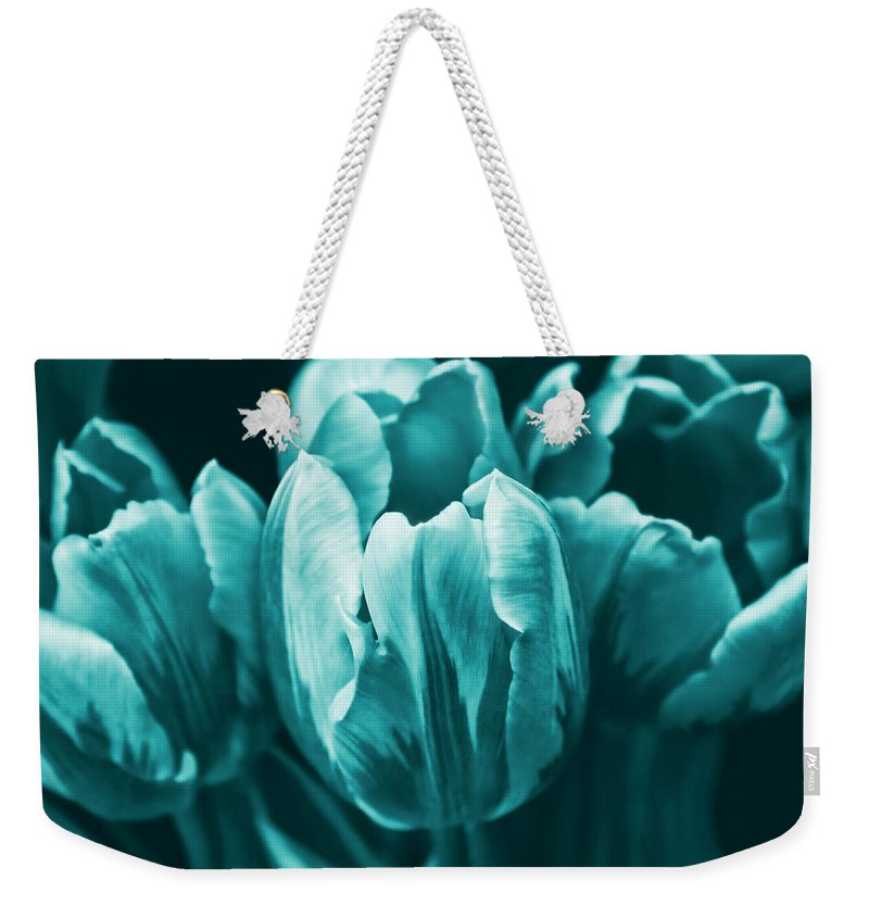 Tulip Weekender Tote Bag featuring the photograph Teal Tulip Flowers by Jennie Marie Schell