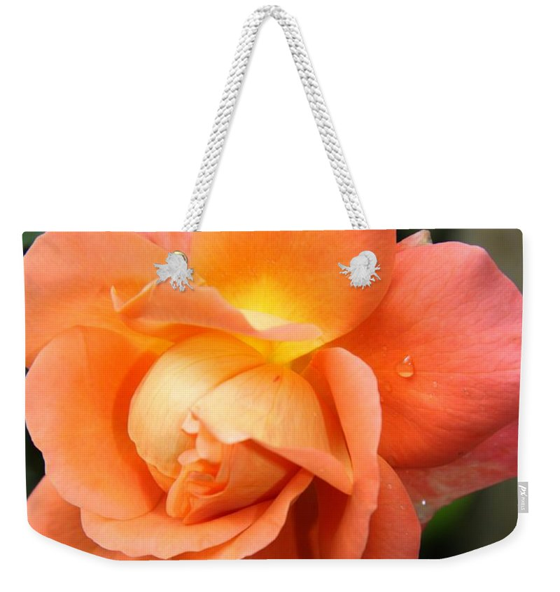 Rose Weekender Tote Bag featuring the photograph Teardrops by Christiane Schulze Art And Photography