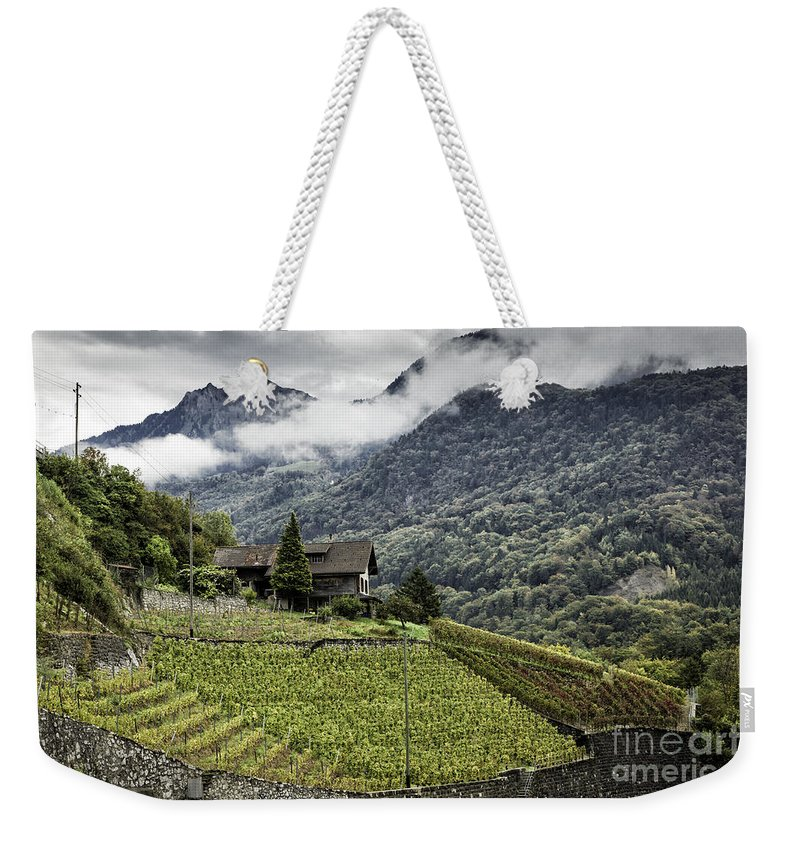 Leysin Weekender Tote Bag featuring the photograph Terraced Vineyard by Timothy Hacker