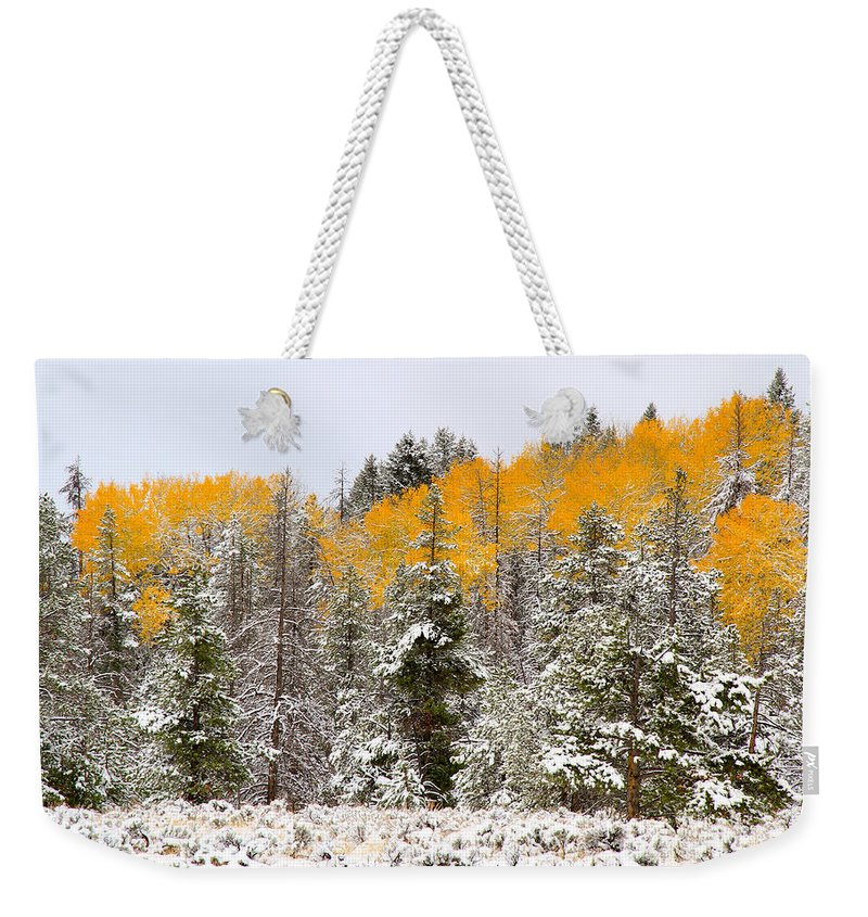 Trees Weekender Tote Bag featuring the photograph Teton Aspens by Ed Riche