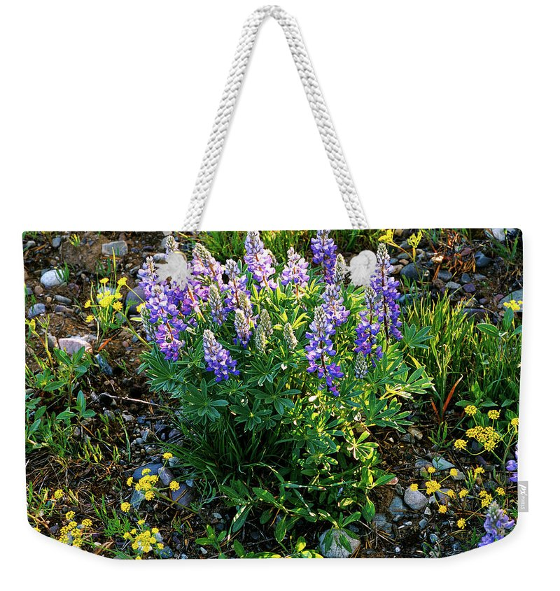 Wyoming Weekender Tote Bag featuring the photograph Teton Widflowers by Ed Riche