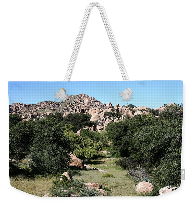 Texas Canyon Weekender Tote Bag featuring the photograph Texas Canyon Landscape by Joe Kozlowski