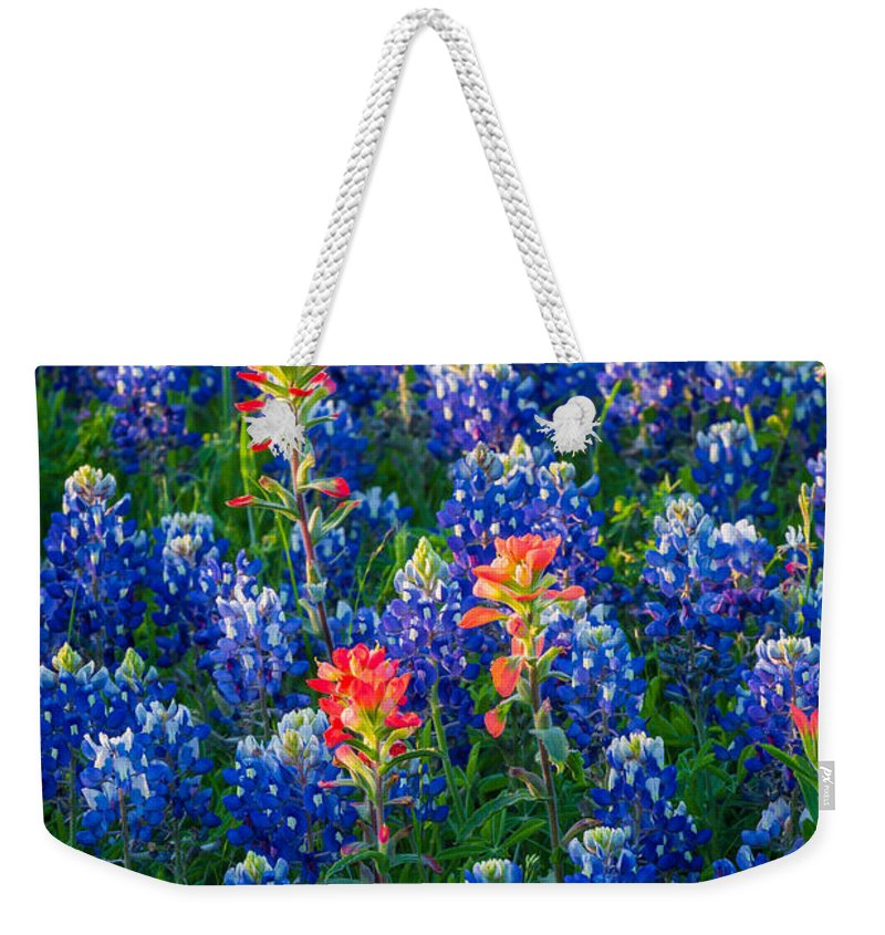 America Weekender Tote Bag featuring the photograph Texas Colors by Inge Johnsson